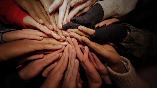 Unity_Treated-1